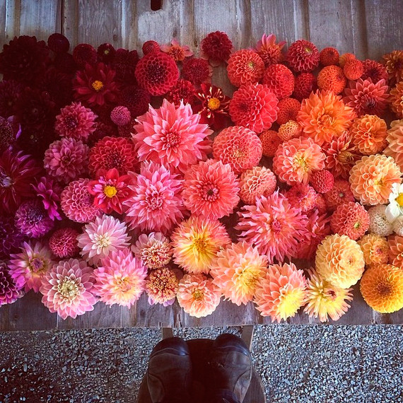 25 Floral Designers To Follow On Instagram Martha