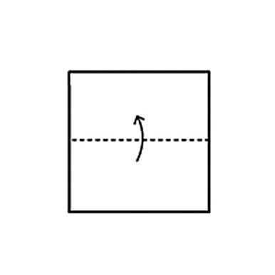 napkin-fold-buffet-step-1-1214.jpg
