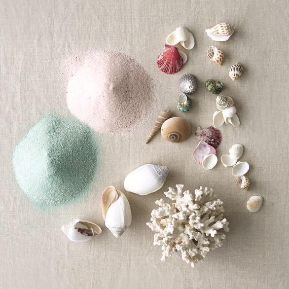 seashells-and-sand-106-mwd110955.jpg