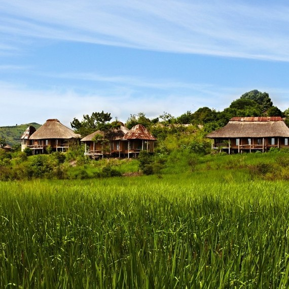 Kyambura Gorge Lodge and Bwindi Lodge