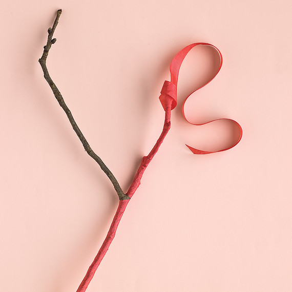 ribbon-how-to-mwd103764-branch-0515_vert.jpg