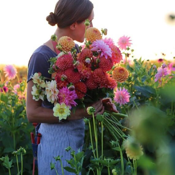 farmer-florists-erin-benzakein-floret-flowers-1214.jpg