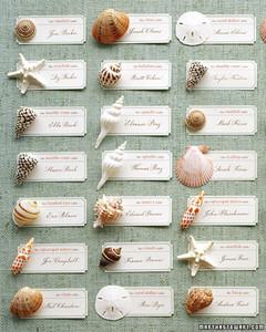 msw_summer05_shell_cards.jpg