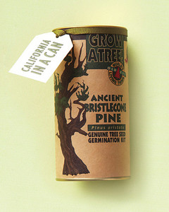 favors-tree-can-mwd107607.jpg