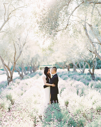 helen huu wedding couple in lavender field