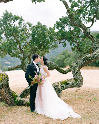 stephanie calvin wedding couple in front of tree