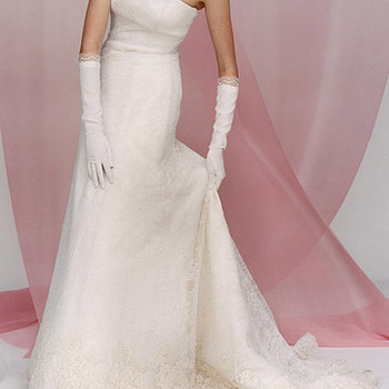 Lace Wedding Gowns and Dresses