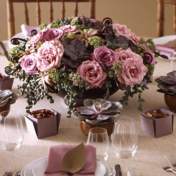 Lilac and Brown: Succulent Centerpiece
