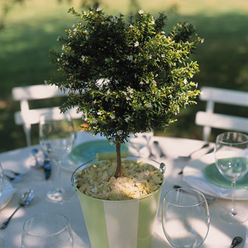 Beach Bucket Centerpieces