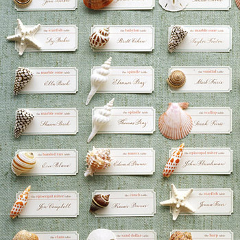 Keepsake Seashell Seating Cards