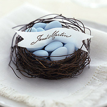 Bird's Nest Favors