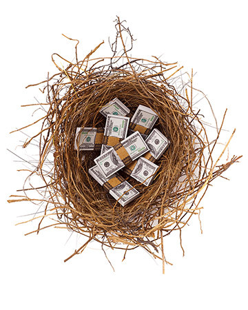 bundled money nest