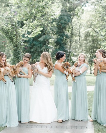 Bridesmaids Hold Puppies Wedding Photo