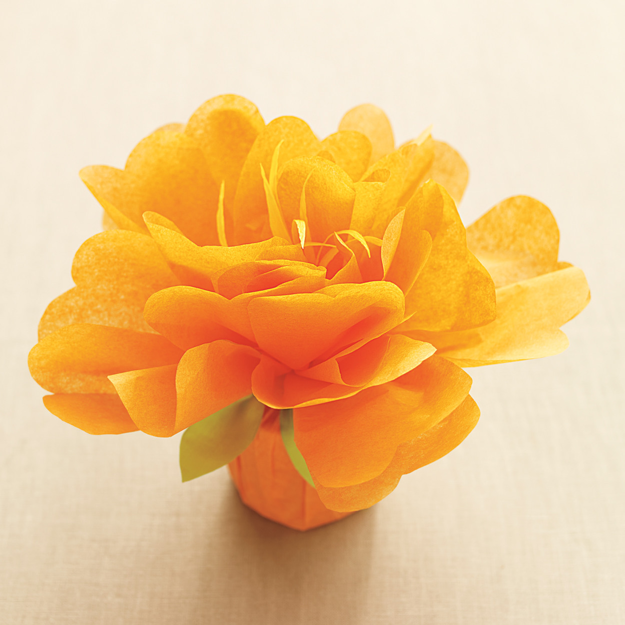 Martha Stewart Tissue Paper Flower Bouquet Kit Vaydileforic