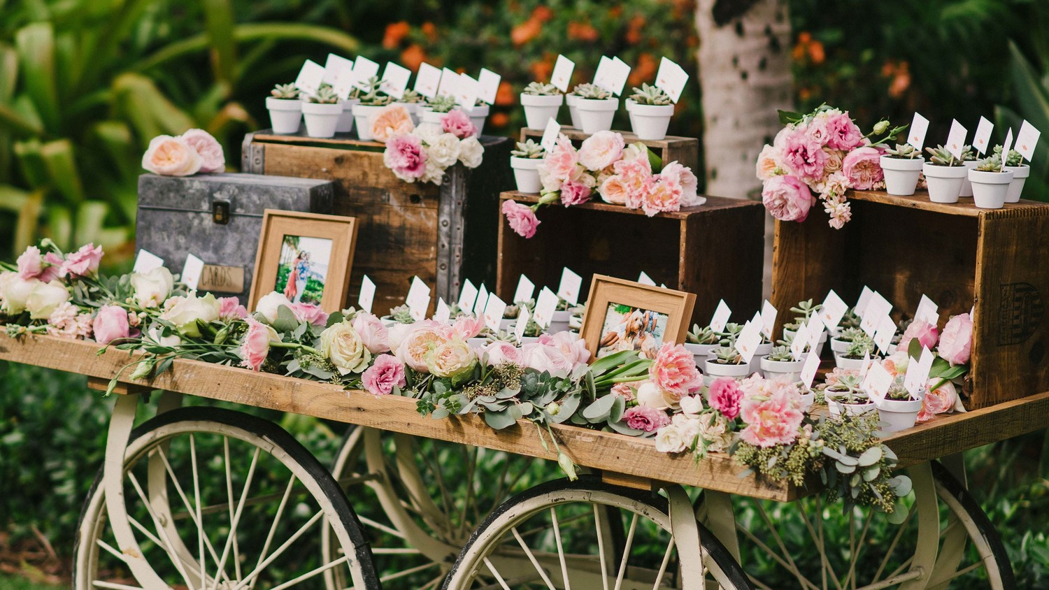 Martha Stewart Wedding Gift Ideas: 50 Creative Wedding Favors That Will Delight Your Guests