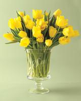 vase-mwd108401.jpg