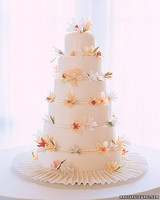 a98497_spr01_cake.jpg