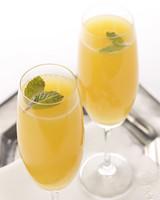 4012_092908_mimosa.jpg