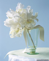 a99242_spr02_orchid.jpg