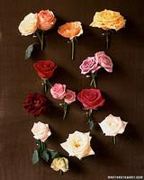 rosebouquets08_spr99.jpg