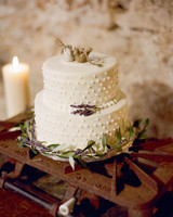 Two-Tiered White Dotted Wedding Cake with Rustic Bird Toppers and Stove Cake Stand