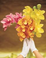 wa98806_fal01_flower.jpg