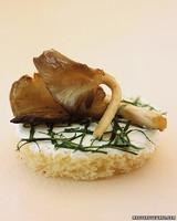 a99194_sum02_mushroom.jpg