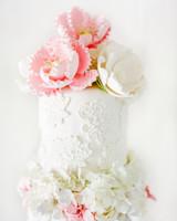 cake-pros-anapaz-0614.jpg