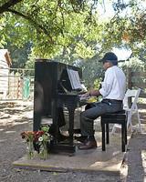 mws1644_1_fal08_piano.jpg