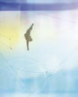 trapeze-mbd108790-002.jpg