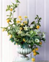 wa101365_sum05_lemons.jpg
