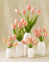 wd104357_win09_tulips.jpg