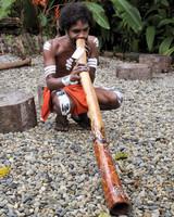 didgeridoo-0811ms107520.jpg