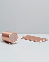 Copper Speaker