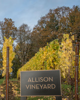 allison-inn-vineyard-1114.jpg