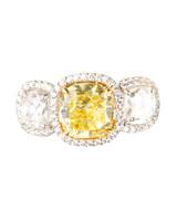 msw_sum10_yellow_ring_katz.jpg