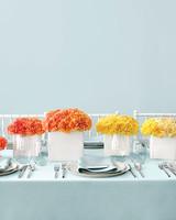 mwd103982_fal08_carnations.jpg