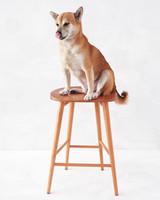 room-board-stool-mwd108187.jpg