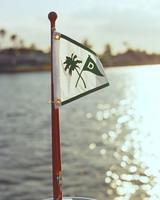 rw_0810_candice_scott_flag.jpg