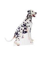 Dog Cardboard Cutout