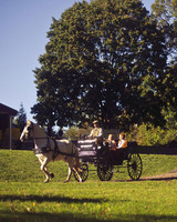 rw_0111_melissa_adam_carriage.jpg
