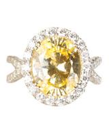 msw_sum10_yellow_ring_michaelm.jpg