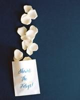 Paper Bags of Flower Petals