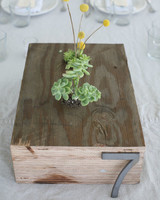 Succulent Table Number Decorations