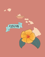 state wedding costs illustration hawaii