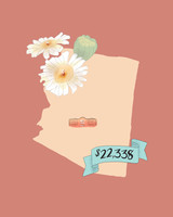 state wedding costs illustration arizona