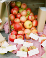apple wedding ideas abby jiu
