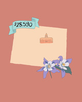 state wedding costs illustration colorado