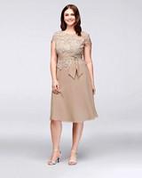 Emma Street Brooch Waist Plus Size Dress