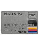msw_fall09_istock_creditcard_budget.jpg